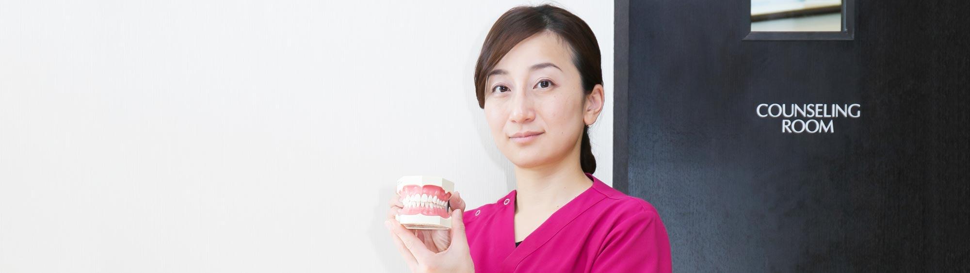 歯の模型を持っている女性歯科医師